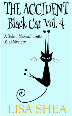The Accident - Black Cat Mini Mystery