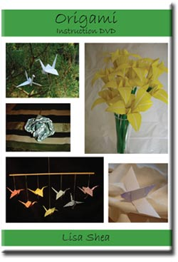 Origami Folding Instructions Video DVD