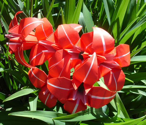Red origami flowers