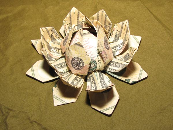 Origami Lotus Flower Out Of Dollar Bills Flowers Healthy