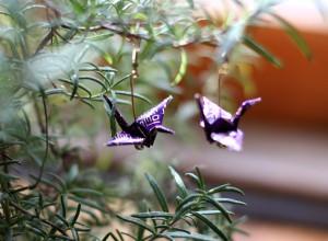 purplegold1