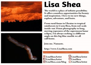 Lisa Shea Art Postcard