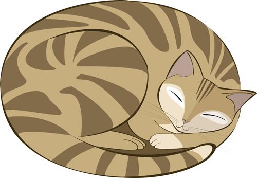 gatto_dormiente_marrone