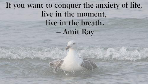 meditate-moment