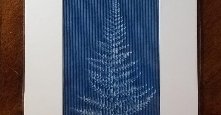 cyanotype fern