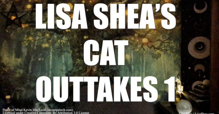 Zuzu the Cat Outtakes