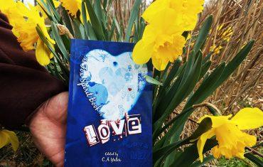 The Fox Spirit Book of Love