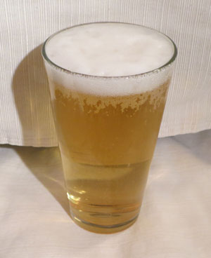 Bud Light Low Carb Beer