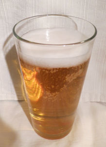 Bud Light Lime Low Carb Beer