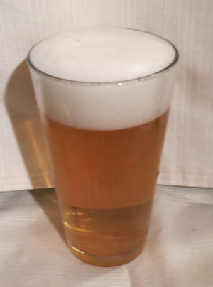 Budweiser Select Low Carb Beer - Low Carb Beer