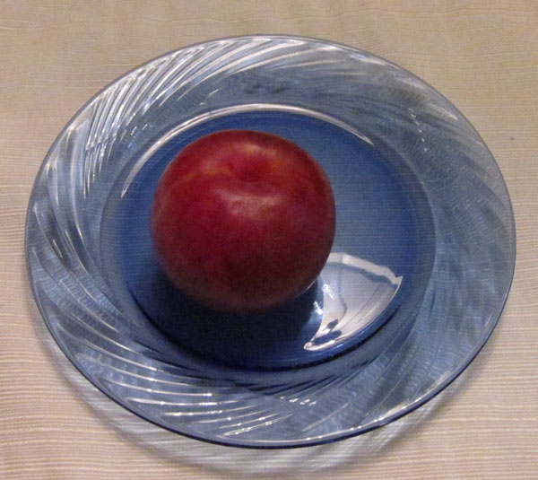 Pluot Photo