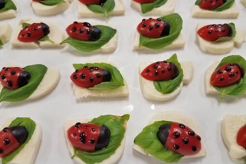 Cute Ladybug Tomato Caprese Salad Snacks