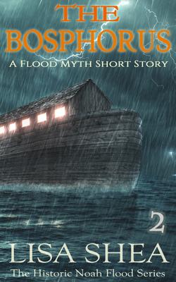 Noah Flood Series