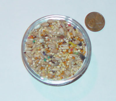 Parakeet and budgie food water and recipes forumfinder Image collections